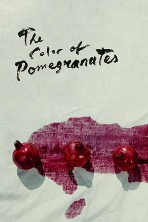 Image The Color of Pomegranates