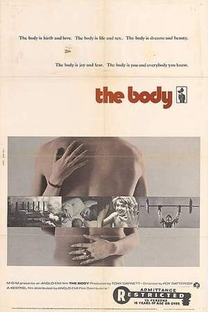 Image The Body