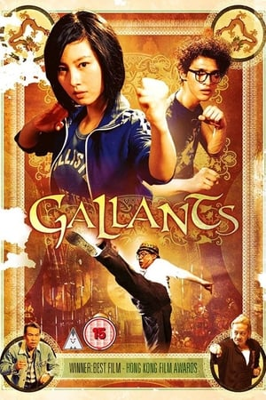 Image Gallants