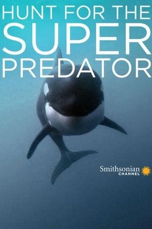 The Search for the Ocean's Super Predator