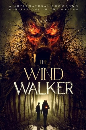 Poster The Wind Walker 2020