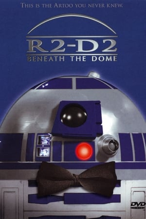 Image R2-D2: Beneath the Dome