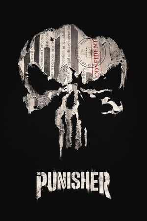 Image Marvel - The Punisher