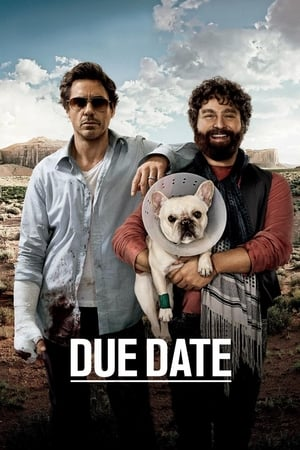 Image Due Date