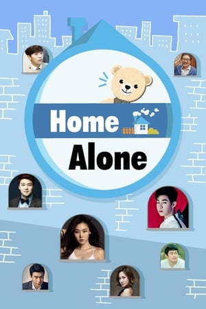 Image Home Alone