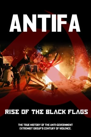 Image Antifa:  Rise of the Black Flags