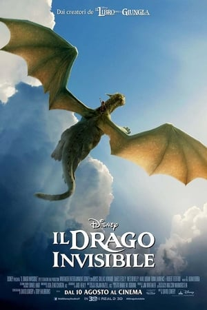 Image Il drago invisibile