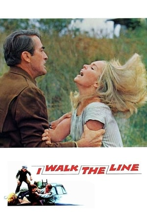 Image I Walk the Line