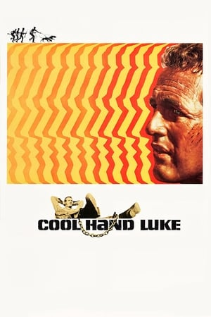 Image Cool Hand Luke