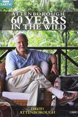 Image Attenborough 60 Years in the Wild