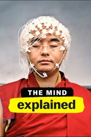Image The Mind, Explained