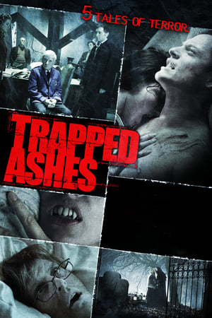 Image Trapped Ashes