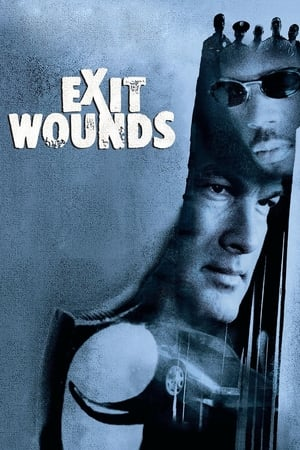 Image Exit Wounds