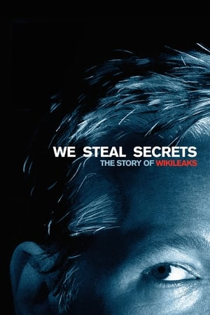 Image We Steal Secrets: The Story of WikiLeaks