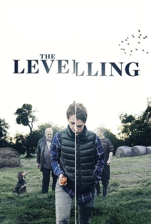 Image The Levelling