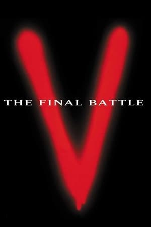 Image V: The Final Battle