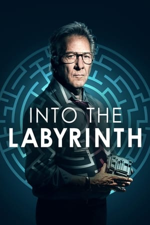 Image Into the Labyrinth