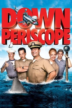 Image Down Periscope