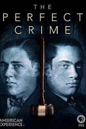Image The Perfect Crime: Leopold & Loeb