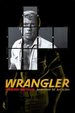 Image Wrangler: Anatomy of an Icon