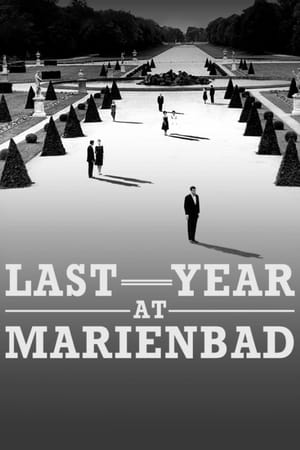 Image Last Year at Marienbad