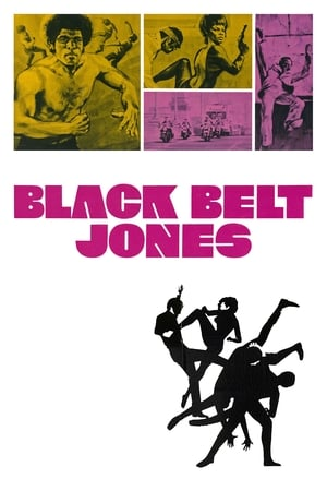 Image Black Belt Jones