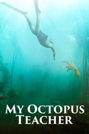 Ver Online My Octopus Teacher