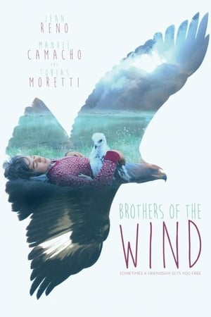 Image Brothers of the Wind