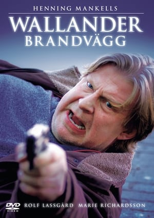 Image Wallander - Firewall