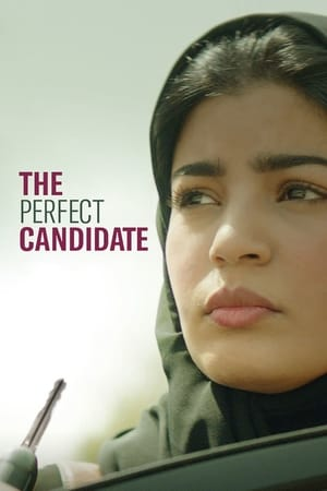 Image The Perfect Candidate