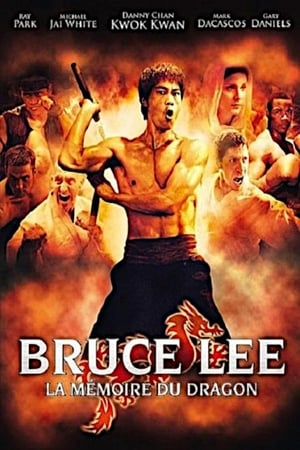 Image Bruce Lee - La Mémoire du Dragon