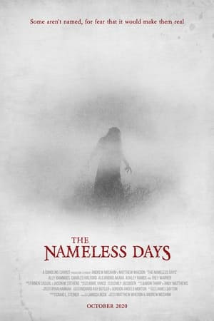 Image The Nameless Days