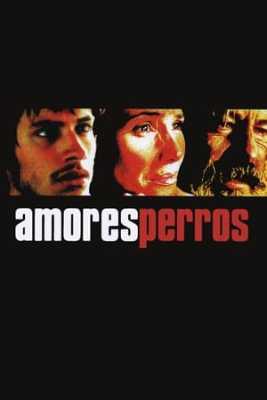 Poster Amores perros 2000