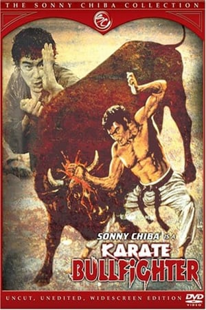 Image Karate Bullfighter