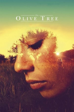 Image The Olive Tree