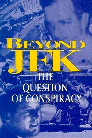 Image Beyond JFK: The Question of Conspiracy