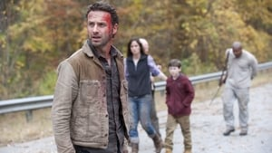 Watch The Walking Dead 2x13 Online