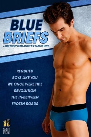 Image Blue Briefs