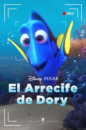 Ver Online Dory's Reef Cam