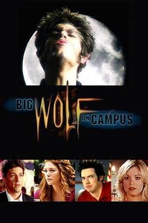 Image Big Wolf on Campus