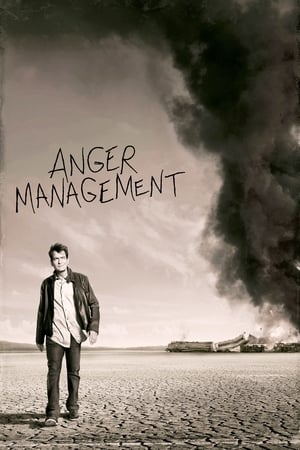 Poster Anger Management 2012