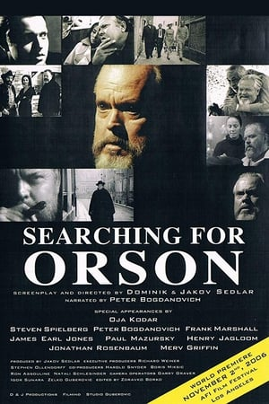 Image Searching for Orson