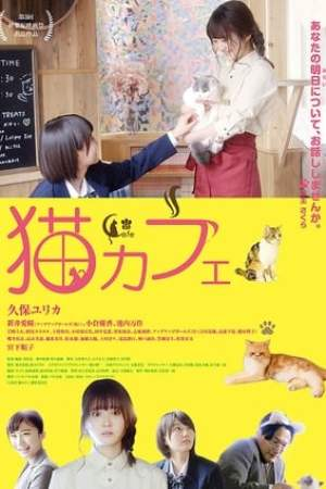 Image Cat Cafe