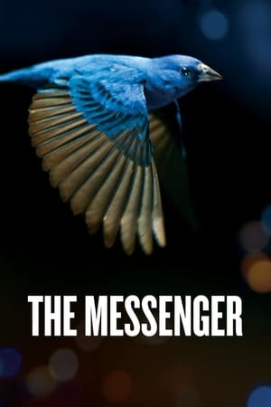 Image The Messenger