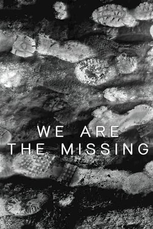 Image We Are The Missing