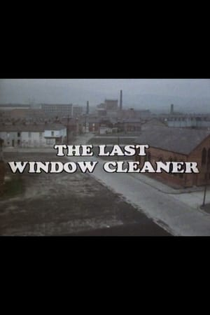 Image The Last Window Cleaner