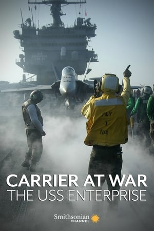 Image Carrier at War: The USS Enterprise