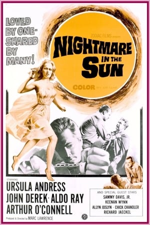 Image Nightmare in the Sun