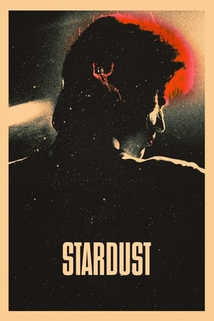 Poster Stardust 2020