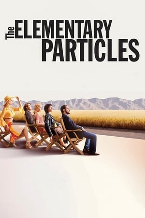 Image The Elementary Particles